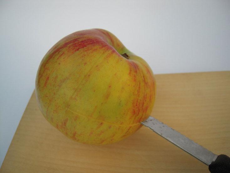 La pomme magique pour jeunes fées et magiciens