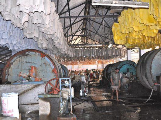 Entreprises de tannage en Inde