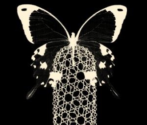Image d'un nanotube et d'un papillon