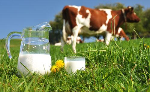 la datation ouverte indique la fraîcheur du lait Speed rencontres brise-glace questions