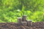 Economie verte: pour les parlementaires, le terreau semble encore trop peu favorable. Shutterstock