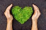 Choix alimentaires, tri des déchets, transports, habitat et entretien: des écogestes, on en fait tous les jours, et depuis longtemps. Shutterstock