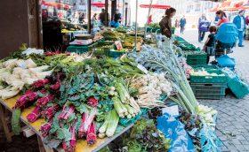 Un mois sans supermarché: si proche et pourtant si loin de la terre